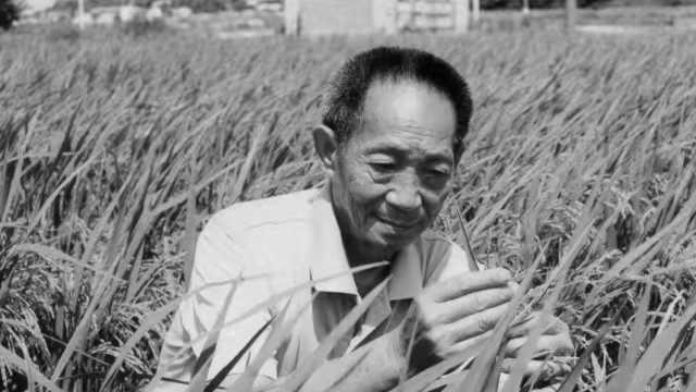 袁隆平的未竟遗愿:实现亩产1200公斤献礼建党百年