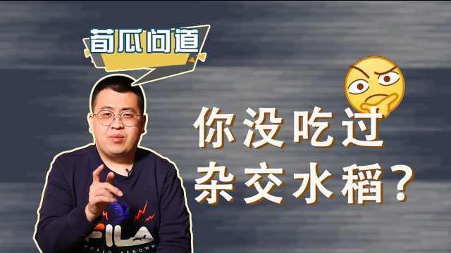 袁隆平的杂交水稻,为啥没人吃过?袁老毕生研究的意义在哪?