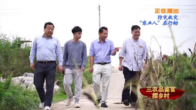 """三农品鉴官探乡村:防灾救灾 """"农业人""""在行动"""