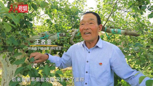 追寻红色印记·环县篇 | 苹果园里说发展