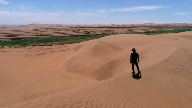 田野实验室 | 当力学遇见沙漠,大漠里瓜果飘香