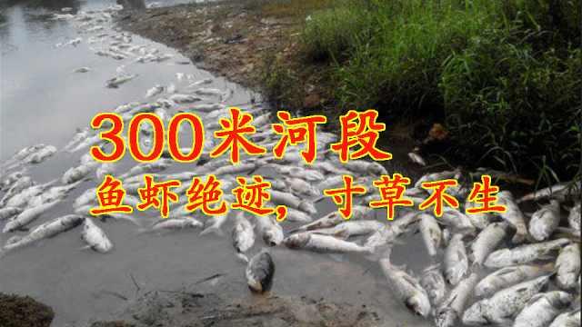 300米河段鱼虾绝迹,寸草不生,专家揭开十几亿年的秘密