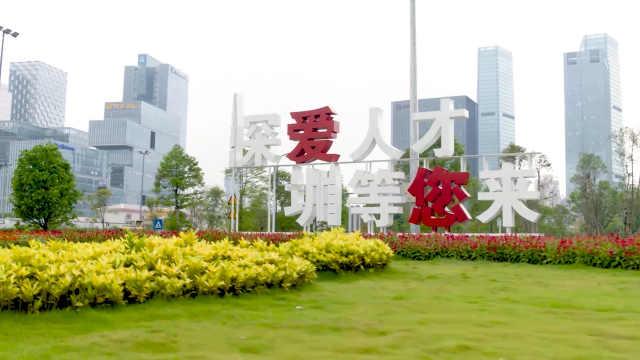 在深圳就业是一种什么样的体验?