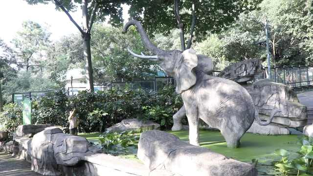 不是牢笼!22国超160位师生合力,这家动物园打造动物理想家