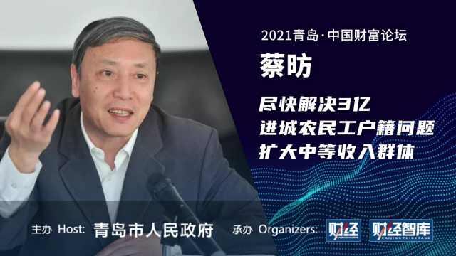 蔡昉:尽快解决3亿进城农民工户籍问题,扩大中等收入群体