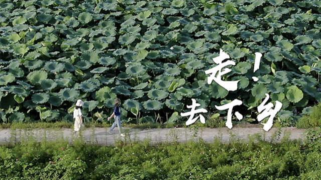90后闺蜜选择离开城市下乡工作,改造重庆最美村庄