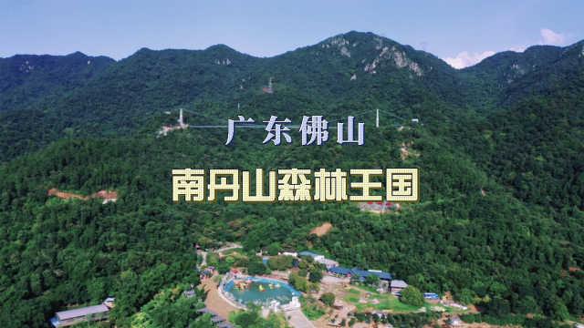 广州周边避暑胜地,佛山原始森林亲子游