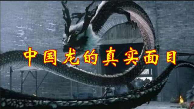 长沙马王堆文物揭开中国龙的真实面目!原来龙是这样演变的