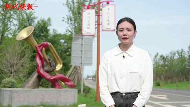 现代快报记者担任红色文化志愿者,走进大王庄党性教育基地