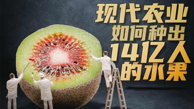 14亿人一年能吃多少水果?中国人的水果自由全靠他们