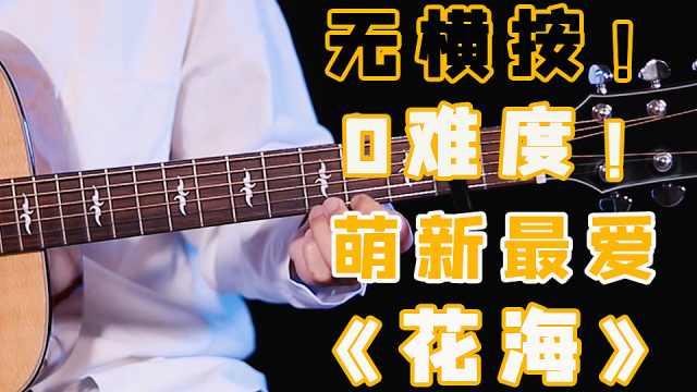 【30S装X指弹】0难度《花海》片段吉他指弹教学