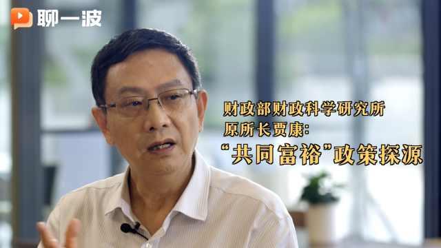 """财政部财政科学研究所原所长贾康:""""共同富裕""""政策探源"""