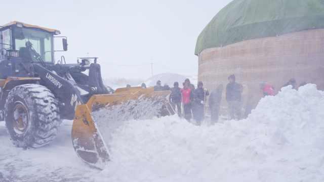 内蒙古额尔古纳凌晨遇暴风雪袭击,实拍农牧场冒雪抢收农作物
