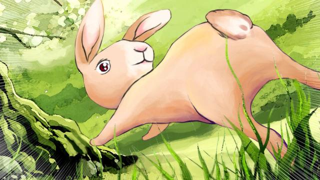 兔子撞树,是偶然还是另有原因?