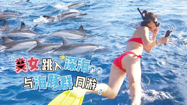 美女与海豚群同游,速度惊人!