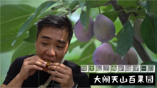 新疆:听说这儿的水果是最好吃的