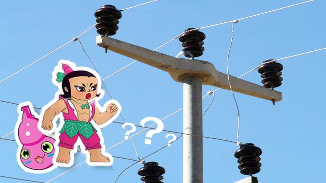 """电线杆上的""""葫芦""""到底是什么?"""