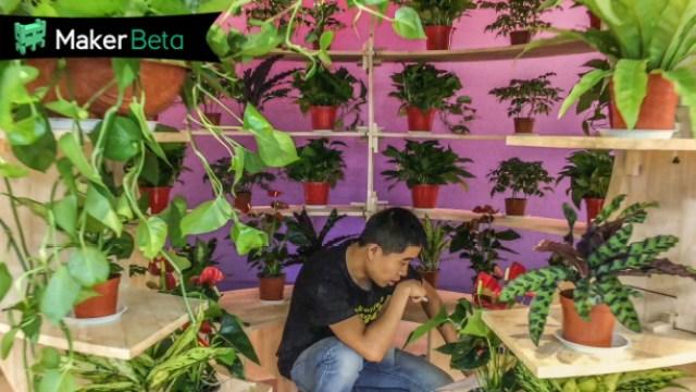 生态卧室,亩产千吨氧气!