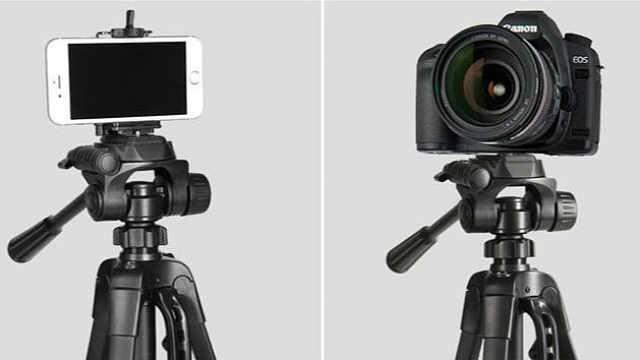 手机和相机拍出的照片,差距多大?