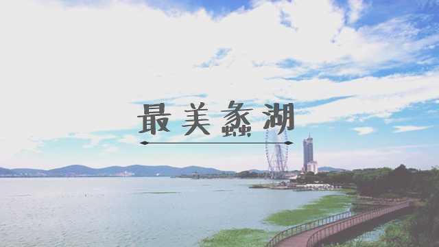 环蠡湖国际半程马拉松开跑