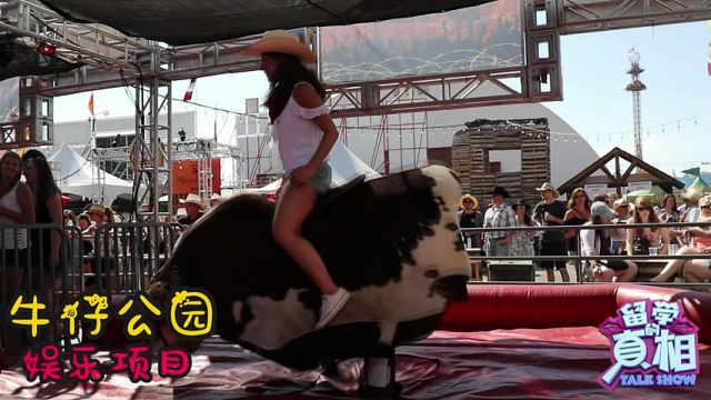 加拿大牛仔节,牛仔骑马8秒擒牛