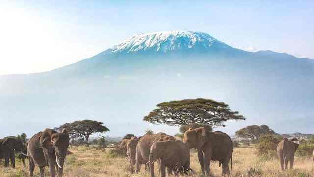 炎热的非洲为什么有终年积雪的奇观
