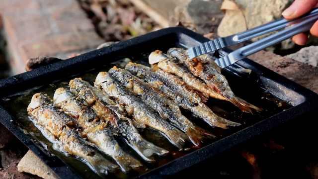 农村小哥野外烤盘煎鱼,色香味俱全