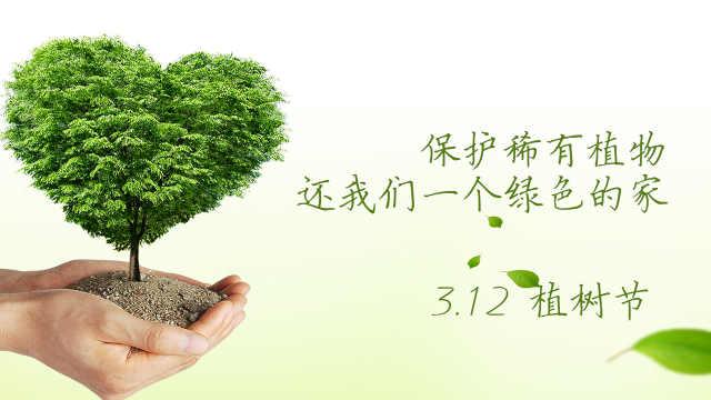植树节呵护绿色生命捍卫蔚蓝家园!