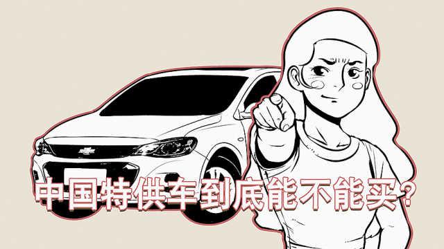 中国特供车到底值不值得买?