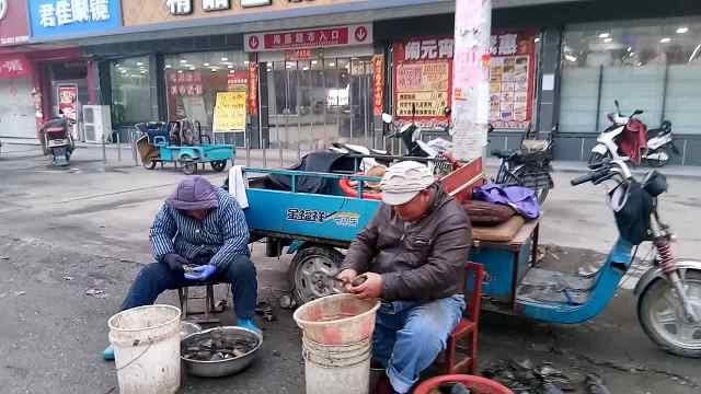9旬老母街边帮儿劈河蚌:怕他太辛苦