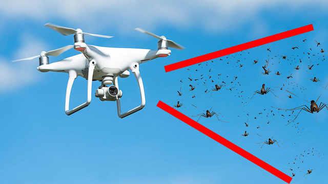 科学家用无人机,放生5万只蚊子