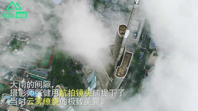 雨后的南京,美成了人间仙境