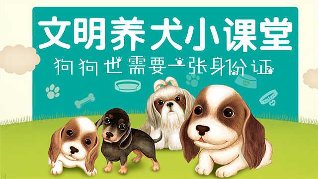 文明养犬小课堂:狗狗也需要身份证