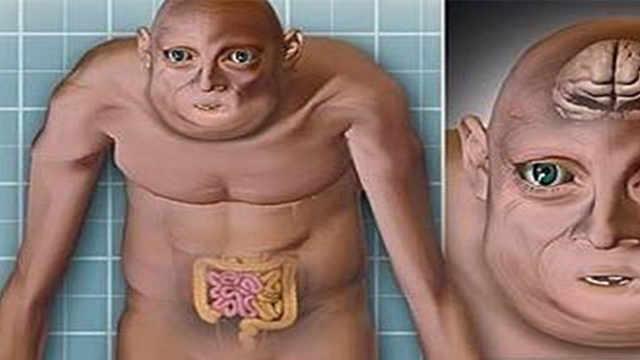 200万年后,人类哪些器官会消失?
