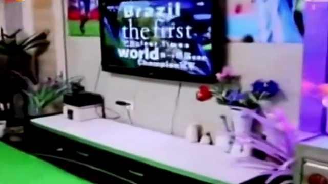 好媳妇 改造客厅给老公看世界杯