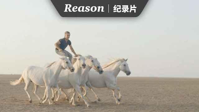 《Horse Whisperer》关于马的故事