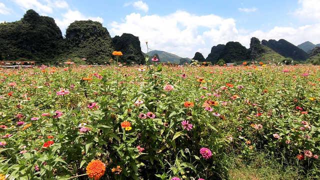 广东最低调的景点:风景不输桂林