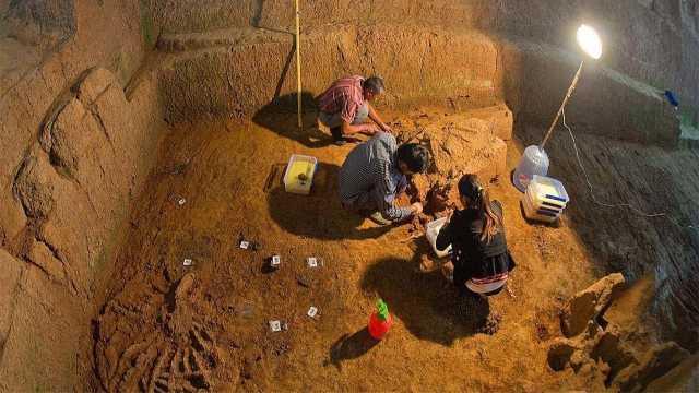 地球45亿岁,真的只出现一批人类?