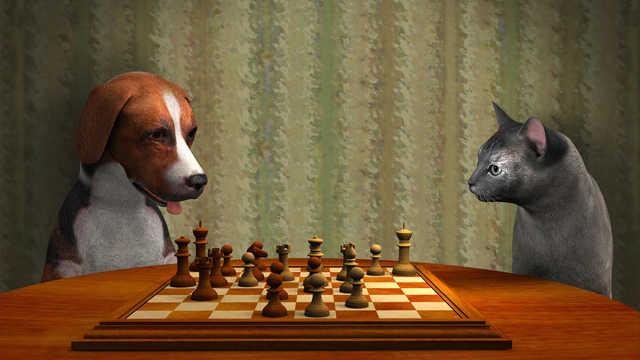猫咪和狗狗,到底谁更聪明?