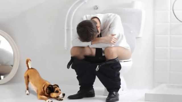 有这12件事,证明狗狗爱你爱惨了