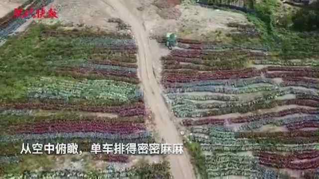 南京多出来的30万辆共享单车在这里