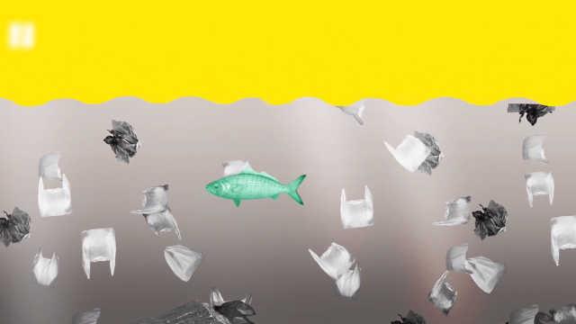 无法估量!塑料污染到底有多严重
