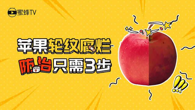 苹果轮纹腐烂,防治只需三步!