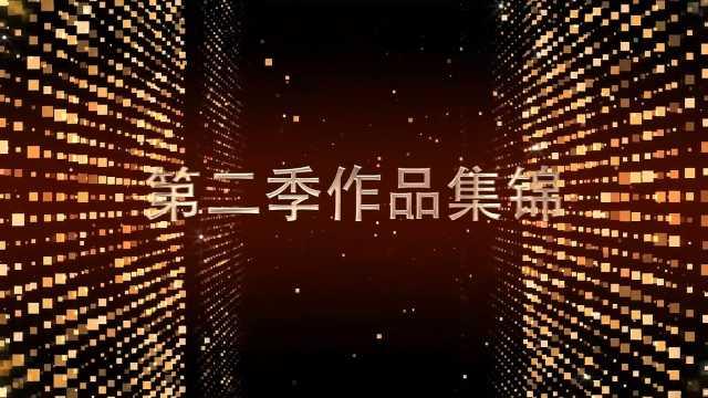 平顶山网络微视频大赛第二季集锦