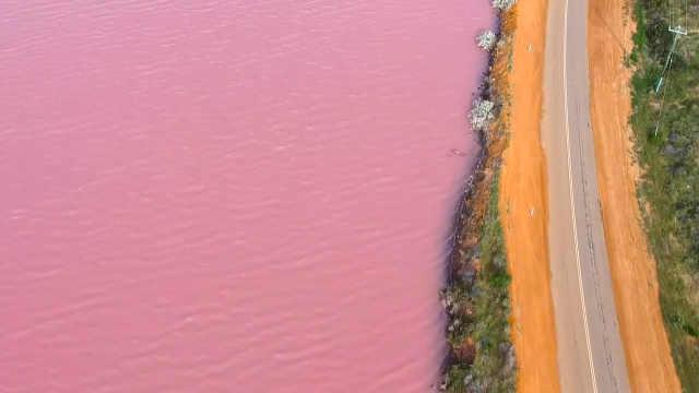 澳洲西部超浪漫粉红湖,想去玩吗?