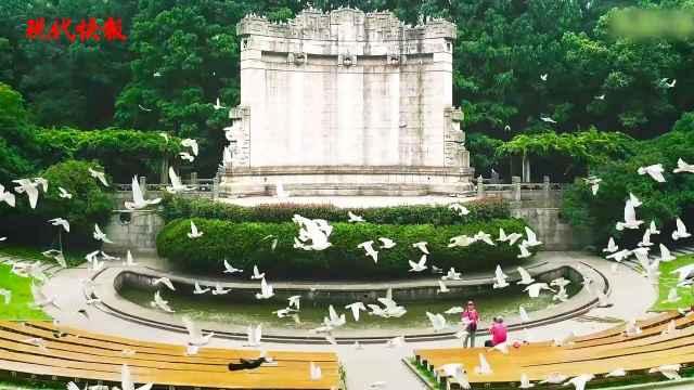 国际和平日,南京献给世界的2分钟