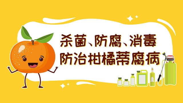 如何让柑橘远离蒂腐病?