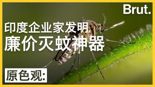 印度企业家发明了一款廉价灭蚊神器