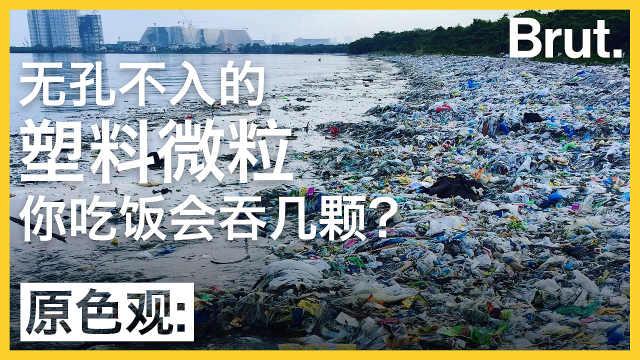 无孔不入的塑料微粒,污染有多严重?