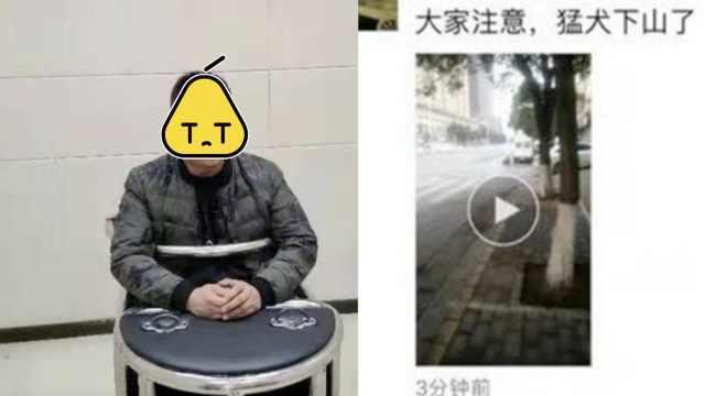 男子朋友圈辱骂交警贴条,被拘7日